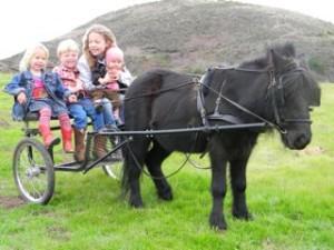 kidsoncart2