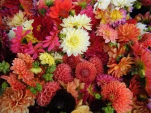 weddingflower1