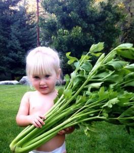 Danica Draper with Utah Tall celery