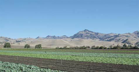 FOOD POLITICS: THE 2012 FARM BILL