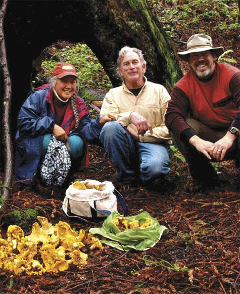 WINTER FORAGING: THE CULT OF THE WILD MUSHROOM